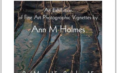Exhibition by landscape Photographer Ann Holmes