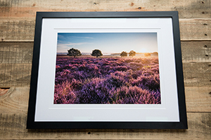 Giclee Printing and professional custom picture framing