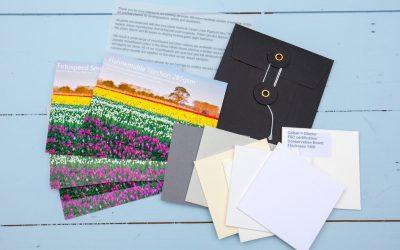 New Paper Sample Packs